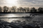 New-Years-Dive-at-Klinkenvlierse-Plas-Coevorden-the-Netherlands