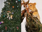 Tiny-kitten-in-a-tree-and-lion-on-a-Christmas-tree