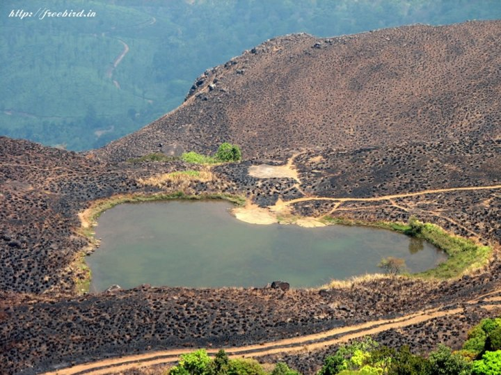Heart-shaped-lake-on-the-way-to-Chembra-Peak-Wayanad-Kerala