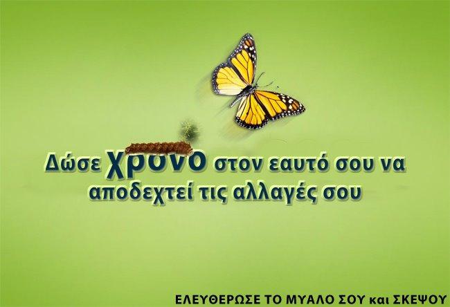 420841_307948649258959_1675269851_n