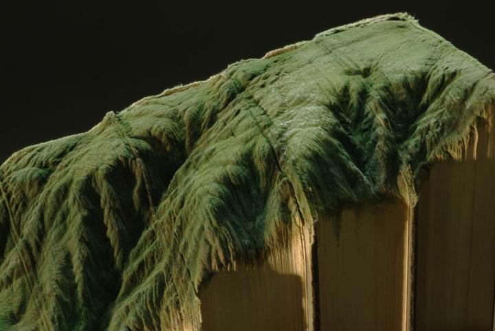 landscape-book-art-guy-laramee-4